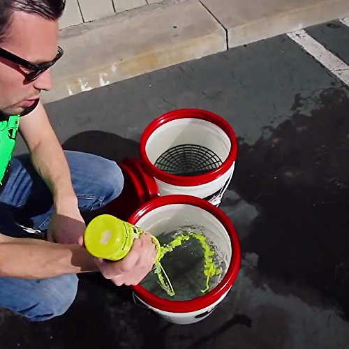 Chemical Guys Citrus Wash and Gloss Autoshampoo mit Glanzverstärkern 473ml - 5