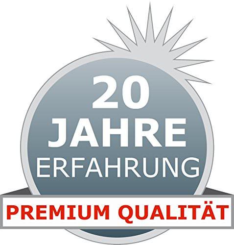 ALCLEAR 721IR Premium Auto Innenreiniger mit Tiefenwirkung, 1.000 ml - 3